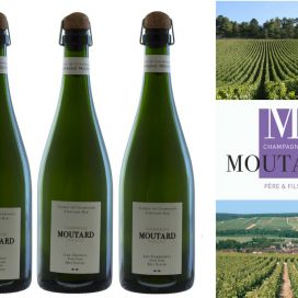 Champagne Famille Moutard
