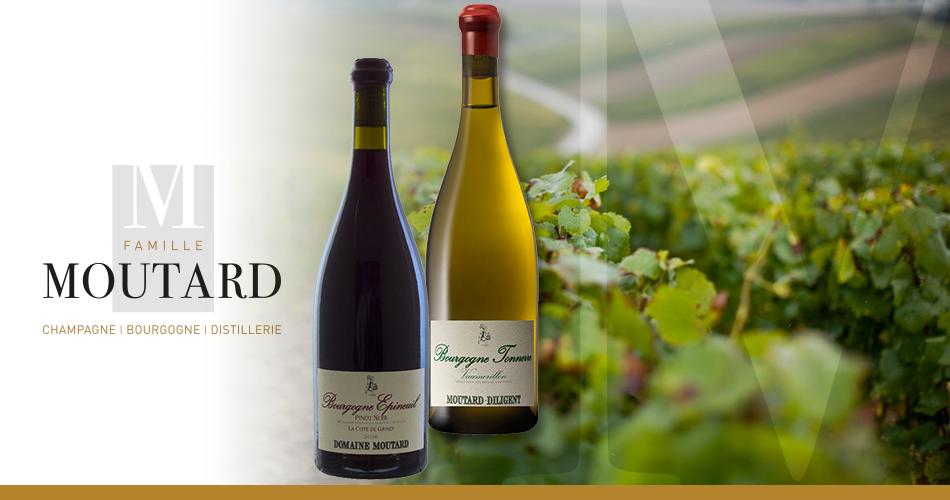 Famille Moutard | Bourgogne Côte de Grisey + Tonnerre Vaumorillon